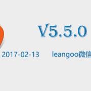 leangoo_v5.5.0