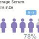 scrum中文网scrum行业报告